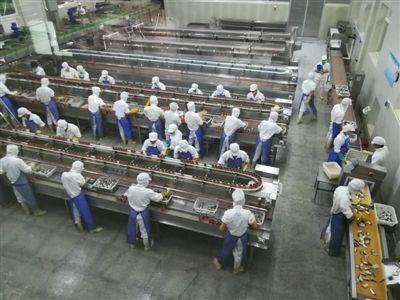 河北廊坊霸州都市食品产业园